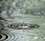 До конца недели в Украине дожди