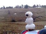 Украинцев ждут аномально теплые зимы
