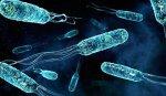 Новое доказательство существования внеземной жизни