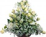 Информационный портал 1qip1 поздравляет всех женщин с праздником 8 Марта!!!