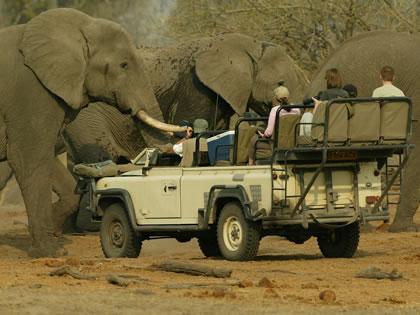 Туры в Маун, Ботсвана